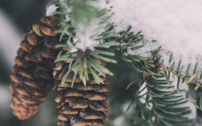 Henkilökohtaista apua myös joulun pyhinä